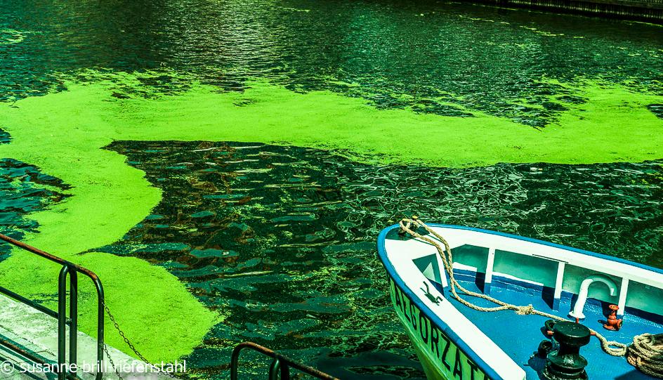 Danzig / Wasser im Hafen